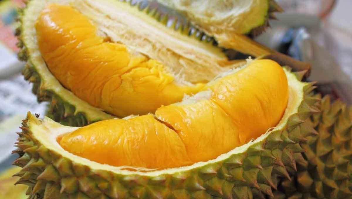 10 Jenis Durian Yang Anda Patut Tahu Selain Musang King Eztakaful